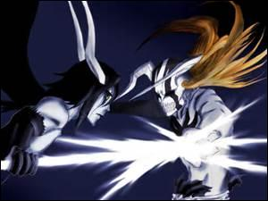Quel est le but des combats d'Ichigo ?