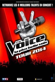 The Voice la finale 2014