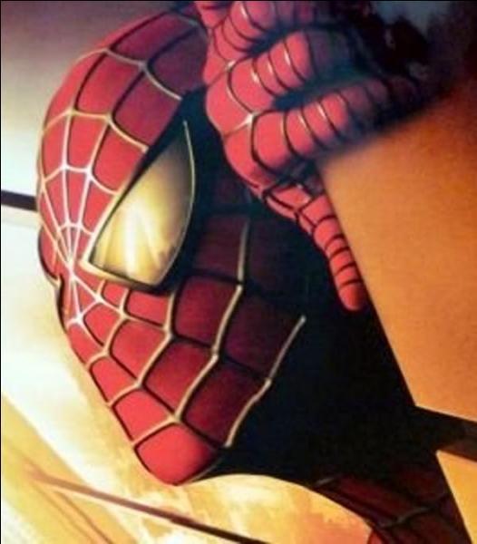 Cette photo de Spider-man, film de Sam Raimi, sorti en 2002, offre-t-elle une particularité ?