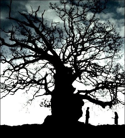 Le second, celui de l'arbre :