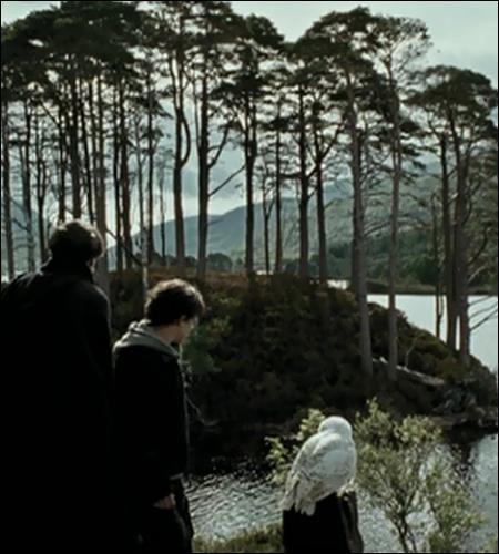 Cette île en arrière-plan aura un rôle capital à jouer dans un prochain film HP. Lequel ?