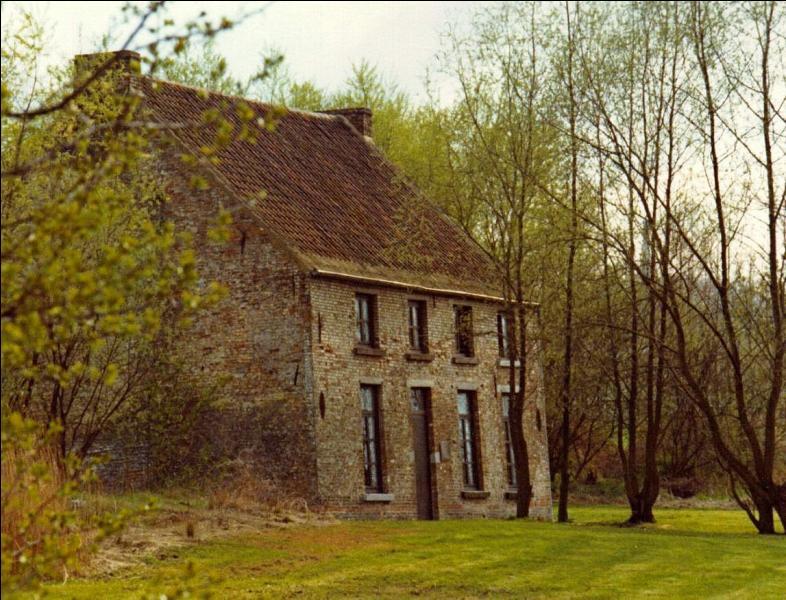 En 1878, Van Gogh obtient une mission d'évangéliste en Belgique, où s'installe-t-il ?