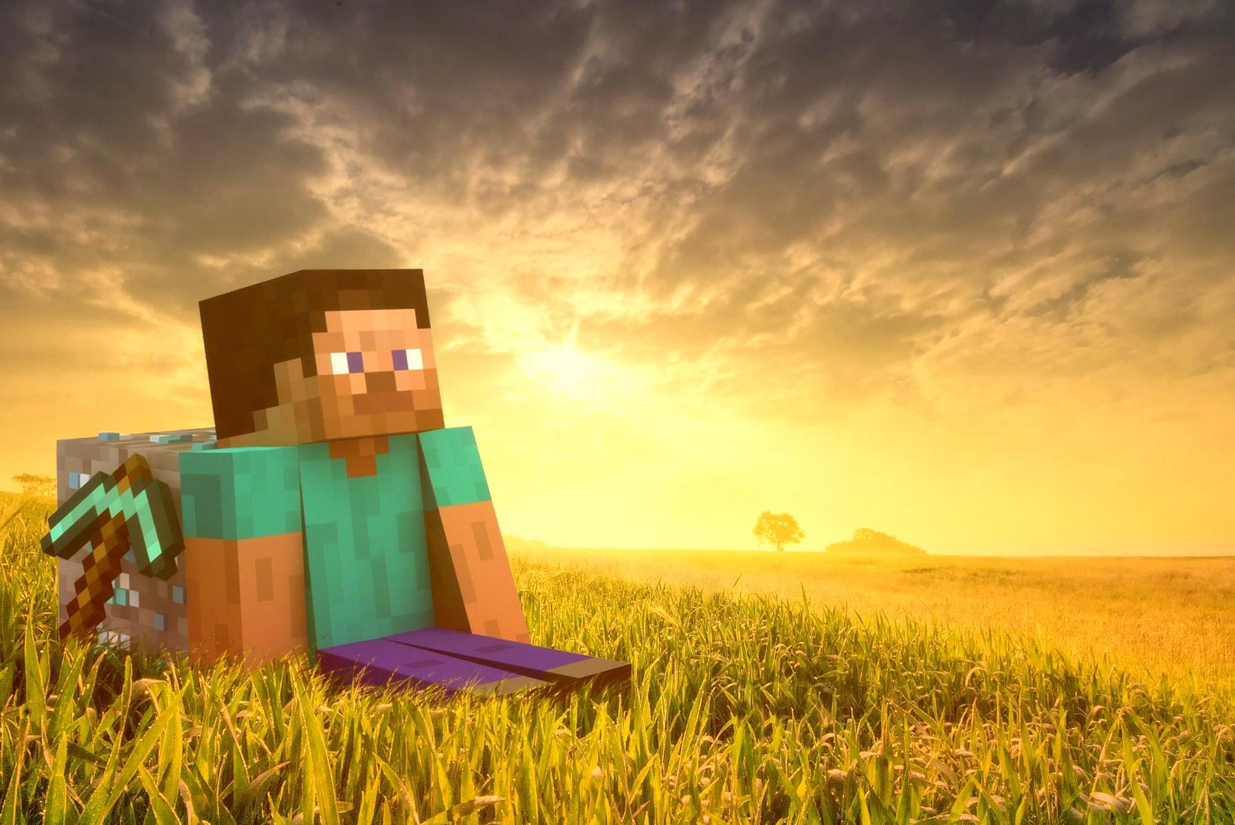 Minecraft, les blocs
