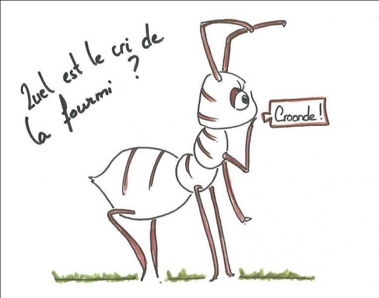 Posséder des insectes communautaires dans ce qui nous sert à avancer !