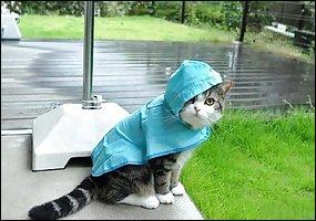 Cette expression est utilisée chez les marins pour désigner un mauvais temps :