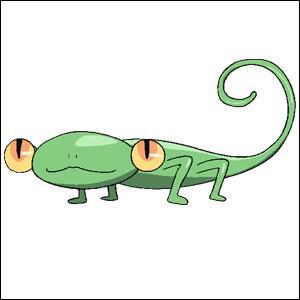 Qui est cet animal ?
