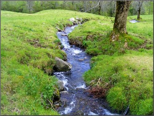 Complétez l'expression : les petits ruisseaux...