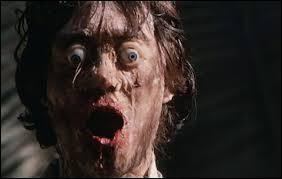 Sorti en 1981, c'est un film français réalisé par Jesús Franco. Où peut-on voir ce zombie ?