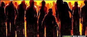 Sorti le 10 mars 2004, c'est un film américain réalisé par Zack Snyder. Les acteurs principaux sont Sarah Polley, Ving Rhames, Jake Weber et Kevin Zegers. Où peut-on voir ces zombies ?