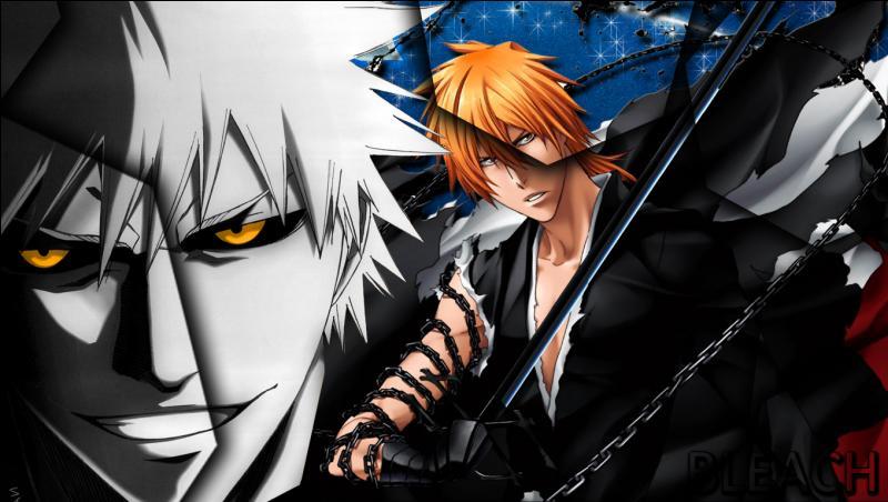 Qui a transpercé Ichigo lors d'une première rencontre afin de le transformer en Shinigami ?
