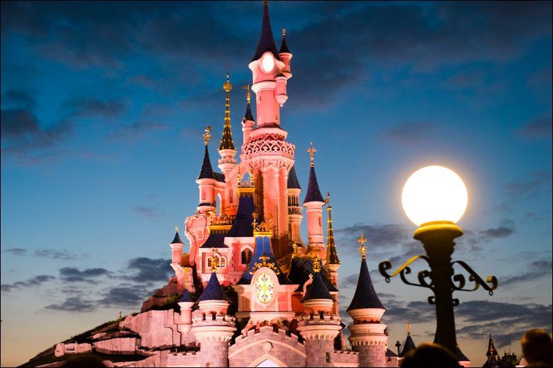 À quelle princesse appartient le château de Disneyland ?