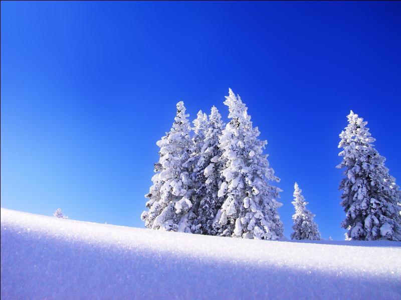 Comment se nomme le Disney se déroulant sous la neige ?