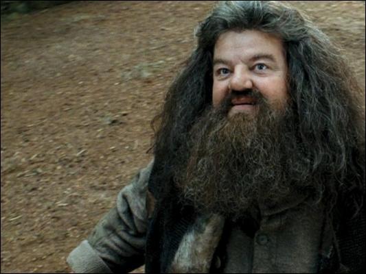 Qui est Hagrid ?
