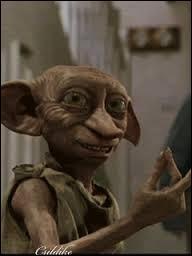 Une fois libre Dobby demande un emploi, mais il n'est pas pris. Pourquoi ?