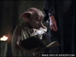 Dans un tome Dobby reçoit un objet qui le rendra plus qu'heureux ! De quoi s'agit-il ?