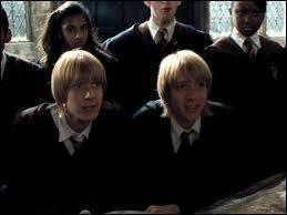 Qu'offrent Fred et George à Harry ?