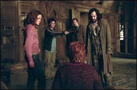 En quoi se transforment Sirius Black et Remus Lupin ?