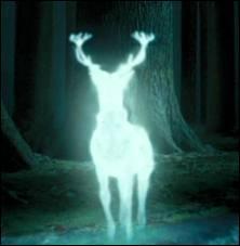 """Qui Harry croit avoir vu chasser """"les Détraqueurs"""" au bord du lac ?"""