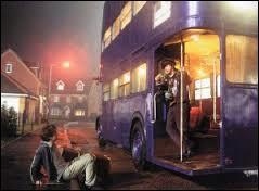 Comment s'appelle le bus magique que Harry prend pour aller au Chaudron Baveur ?