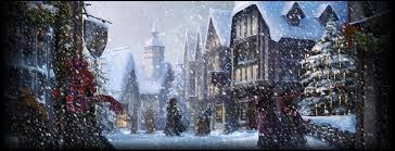 Quel est le lieu où vont Hermione et Ron sans Harry ?