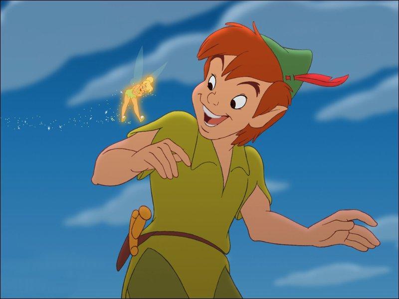 """Qu'il y a-t-il sur cette image tirée du dessin animé """"Peter Pan"""" ?"""
