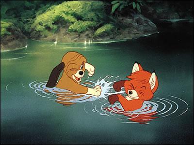 """Cette image est tirée du dessin animé """"Rox et Rouky"""", qu'y vois-tu ?"""