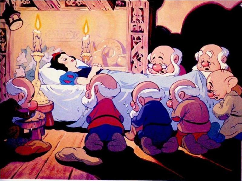 """Que vois-tu sur cette image tirée du dessin animé """"Blanche-Neige et les sept nains"""" ?"""