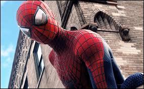 Qui joue Spider-Man (2012 et 2014) ?
