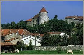 Gondrecourt-le-Château est un village Meusien situé en région ...