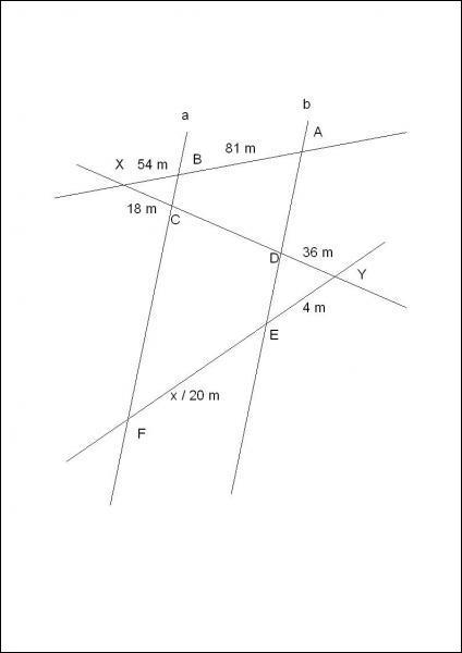 Calcule x dans cette situation en sachant que a // b :