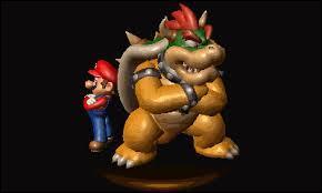 Bowser a-t-il fait équipe avec Mario ?