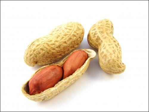 Dans quel dessin animé voit-on des cacahuètes ?