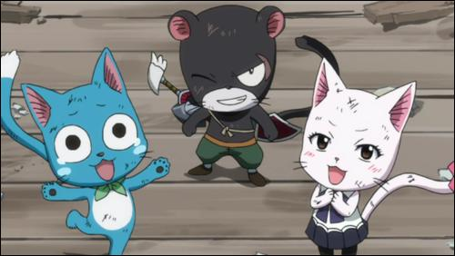 Quels sont les prénoms des trois chats faisant partie de la guilde de Fairy Tail ?