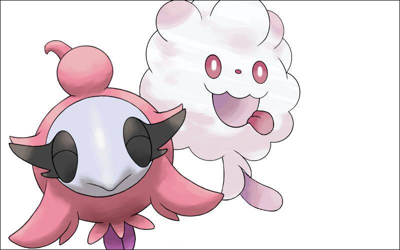 Qui sont ces deux Pokémon ?