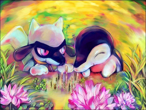 Comment se nomment ces deux Pokémon ?