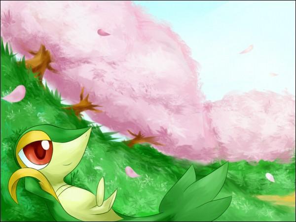 Quel Pokémon est caché dans ce paysage ?