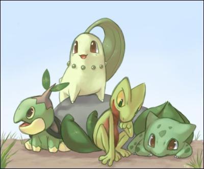 Quel est le point commun de ces quatre Pokémon ?