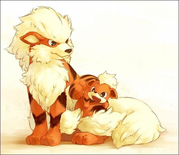 Comment Caninos évolue-t-il en Arcanin ?