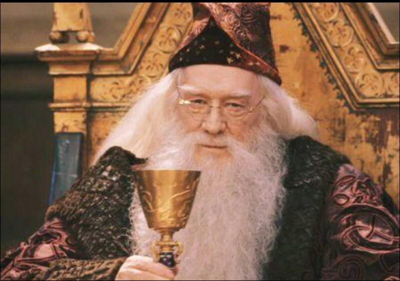 Où est la tombe de Dumbledore ?