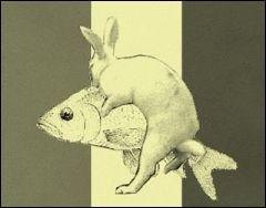 Voilà des noces et des chevauchées étranges que celles de la carpe et du lapin ! Que cela signifie-t-il ?