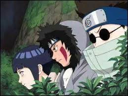 Comment s'appelle le sensei de Kiba, Hinata, etShino