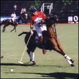 A combien d'équipes le polo se joue-t-il ?