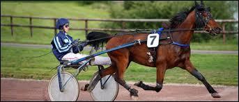 Comment s'appelle la voiture à laquelle les chevaux sont attelés dans le trot attelé ?