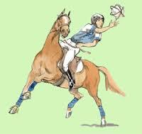 Les disciplines d'équitation