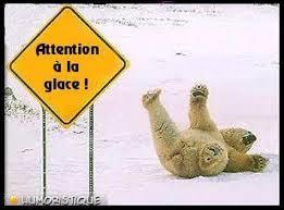 Paf ! Qu'est-il arrivé à ce pauvre ours polaire ?
