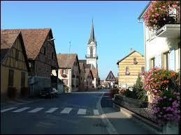 Nous traversons la ville alsacienne de Mussig, dans l'arrondissement de Sélestat-Erstein. Nous nous situons donc dans le département ...