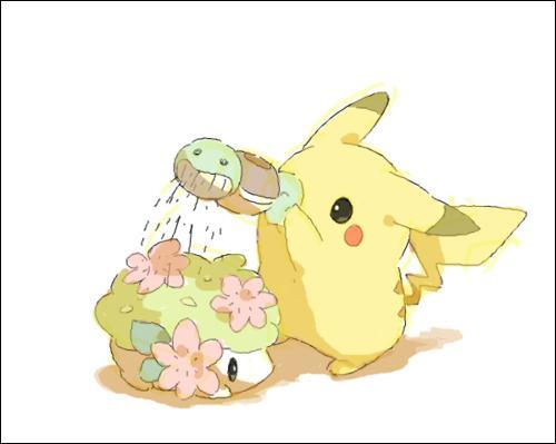 Qui est le Pokémon que Pikachu arrose ?