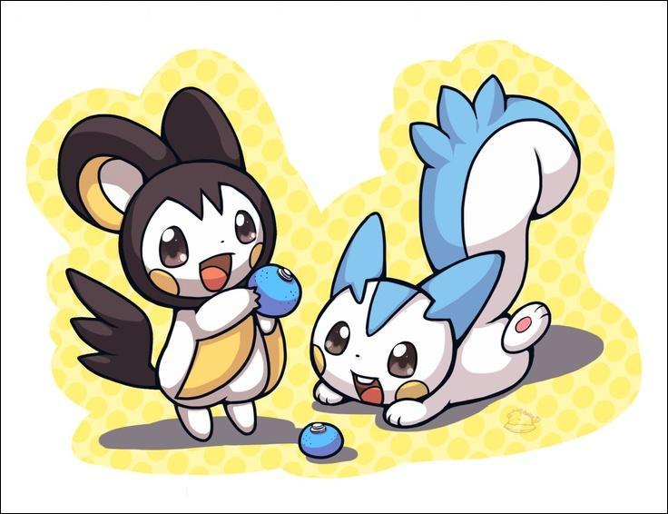 Comment s'appelle le Pokémon au pelage blanc et noir ?