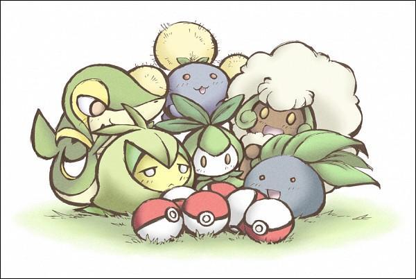 Parmi tous ces Pokémon de type Plante, combien sont des Pokémon évolués ?