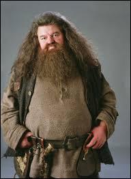 Lors de l'absence temporaire de Hagrid qui va assurer les cours de soins au créature magique ?